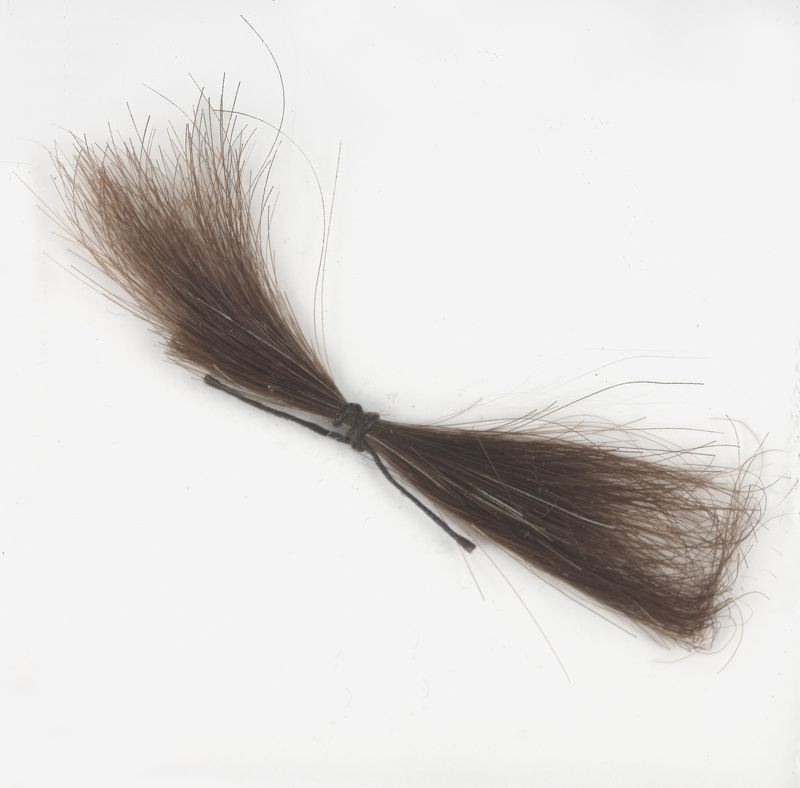 Lock of Poe's hair