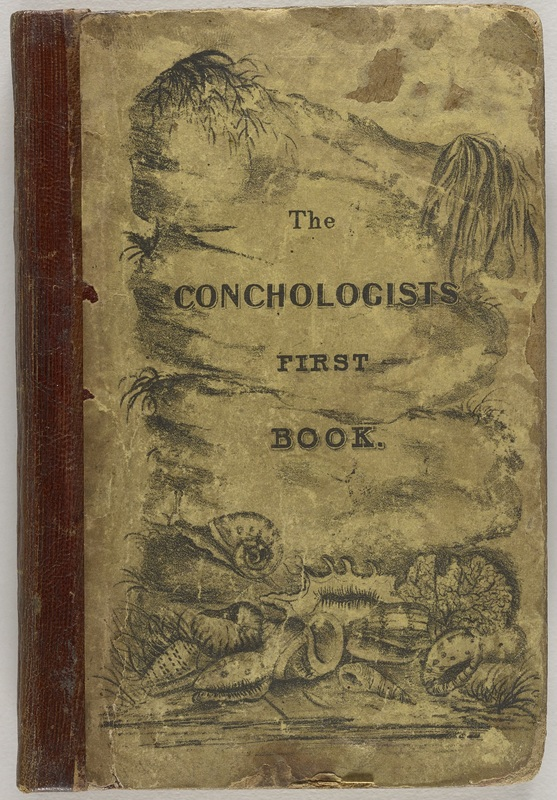The Conchologist's First Book, cover