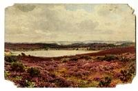 """Surrey"" postcard"